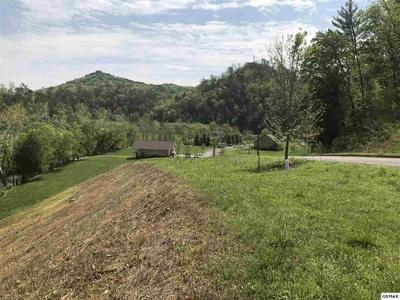 3150 CHEROKEE VALLEY DR, Sevierville, TN 37862 - Photo 2