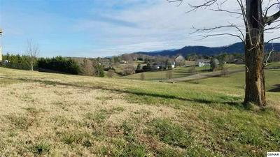 LOT 57 LEXINGTON PARK AVE, Sevierville, TN 37862 - Photo 2
