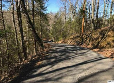 LOT 23 HEADRICK LEAD, Sevierville, TN 37862 - Photo 1