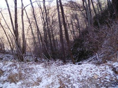 7.84 ACRES BALSAM SLOPES RD, Sevierville, TN 37876 - Photo 2