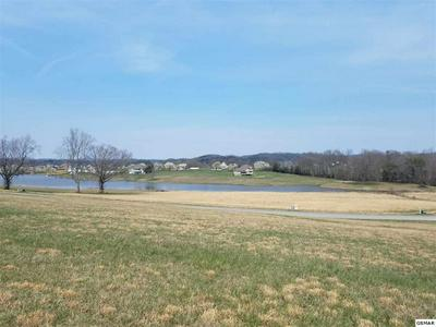 LOT 139 FAIR MEADOW DR, Dandridge, TN 37725 - Photo 2