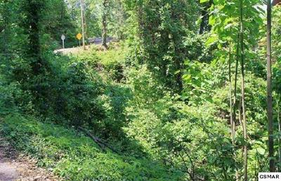 LOT 4 STANS ROAD, Gatlinburg, TN 37738 - Photo 1