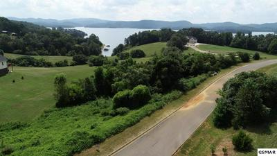 LOT # 115 COW POKE LANE, Rutledge, TN 37861 - Photo 2