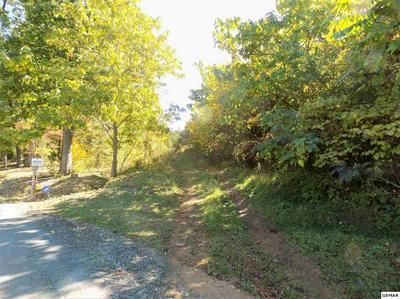 PARCEL 074.06 VIDEO WAY, Newport, TN 37821 - Photo 2