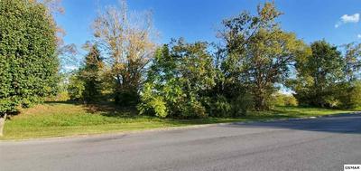 LOT LOT 1 SWANS FERRY, Sevierville, TN 37862 - Photo 2