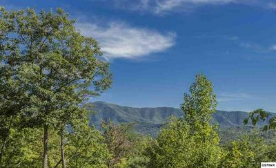LOT #5 TEABERRY MOUNTAIN LANE, Sevierville, TN 37862 - Photo 2