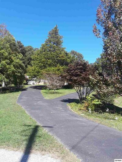 2820 MARY RIDGE FARM RD, Sevierville, TN 37862 - Photo 2