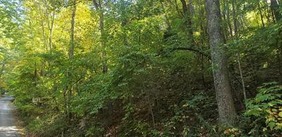 LOT# 832 ORCHARD DRIVE, Sevierville, TN 37876 - Photo 1