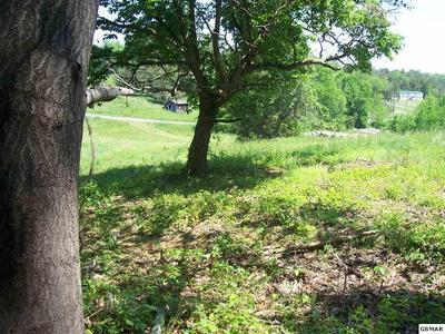 LOT 14, Dandridge, TN 37725 - Photo 2