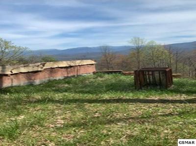 915 SMOKY CT, Gatlinburg, TN 37738 - Photo 2