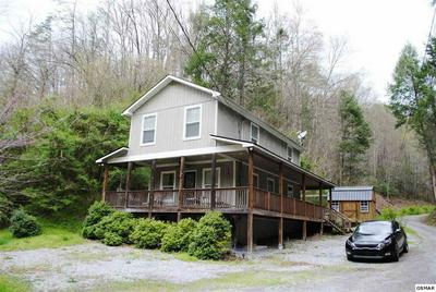 547 KING BRANCH RD, SEVIERVILLE, TN 37876 - Photo 1