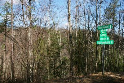 7.84 ACRES BALSAM SLOPES RD, Sevierville, TN 37876 - Photo 1