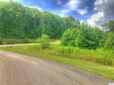 LOT 369 THIEF NECK VIEW DR, Rockwood, TN 37854 - Photo 1