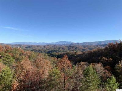 3216 VALLEY VIEW RD, SEVIERVILLE, TN 37862 - Photo 2