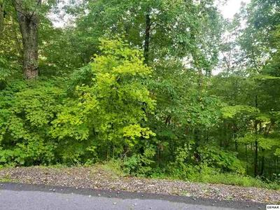LOT 32 CUPID WAY, Sevierville, TN 37876 - Photo 2