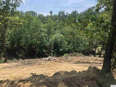 LOT 32 SUMMIT TRAILS DR, SEVIERVILLE, TN 37862 - Photo 2