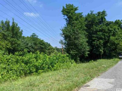 PANTHER SPRINGS RD LOT 14, Morristown, TN 37814 - Photo 1
