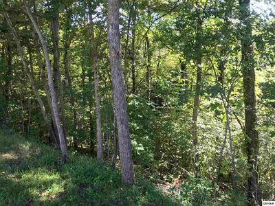 LOT 38 LONGSPUR TRAIL, Sevierville, TN 37862 - Photo 1