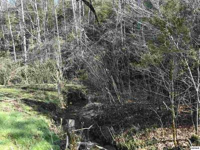 LOT 1 OBES BRANCH ROAD, SEVIERVILLE, TN 37876 - Photo 2