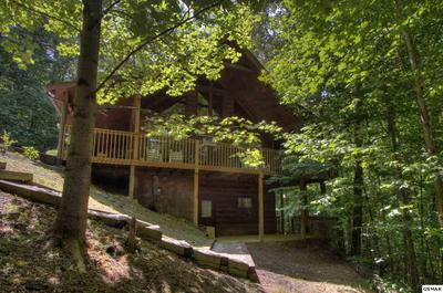 3490 SAGE GRASS WAY, Sevierville, TN 37862 - Photo 2