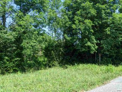 PANTHER SPRINGS RD LOT 14, Morristown, TN 37814 - Photo 2