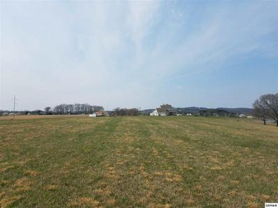 LOT 139 FAIR MEADOW DR, Dandridge, TN 37725 - Photo 1