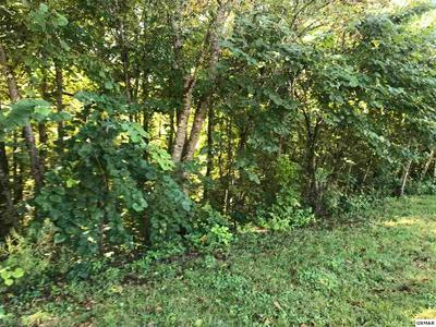 LOT 36 LONGSPUR TRAIL, Sevierville, TN 37862 - Photo 2