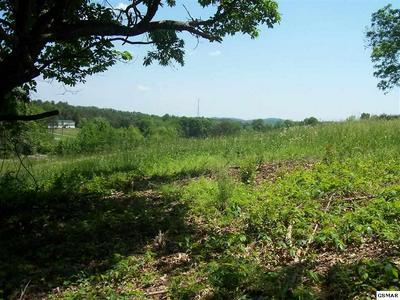LOT 14, Dandridge, TN 37725 - Photo 1