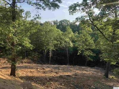 LOT 32 SUMMIT TRAILS DR, SEVIERVILLE, TN 37862 - Photo 1