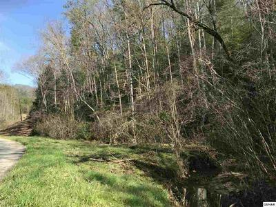 LOT 1 OBES BRANCH ROAD, SEVIERVILLE, TN 37876 - Photo 1