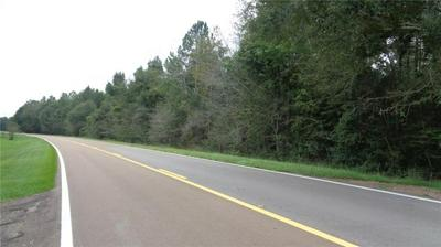 0 E HWY 48 HIGHWAY, Tylertown, MS 39667 - Photo 1