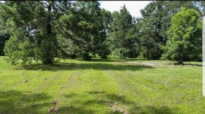 TBD BENE STREET, Franklinton, LA 70438 - Photo 2
