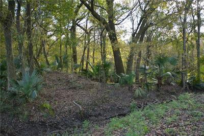 POYDRAS PLANT LOT 11, St. Bernard, LA 70092 - Photo 2