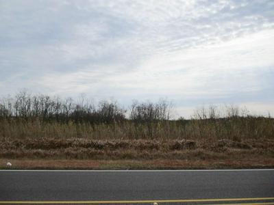 E HOWZE BEACH ROAD, Slidell, LA 70461 - Photo 2