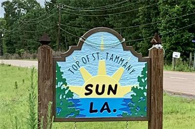 4.65 ACRES HWY 16 HIGHWAY, Bogalusa, LA 70427 - Photo 2