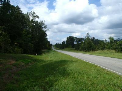 LOAKFOMA RD., Louisville, MS 39339 - Photo 2