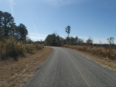 UNION RIDGE RD, Noxapater, MS 39346 - Photo 1