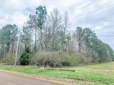 MAYFIELD RD., CALEDONIA, MS 39740 - Photo 1