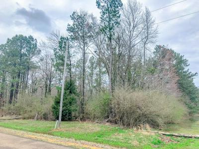 MAYFIELD RD., CALEDONIA, MS 39740 - Photo 2