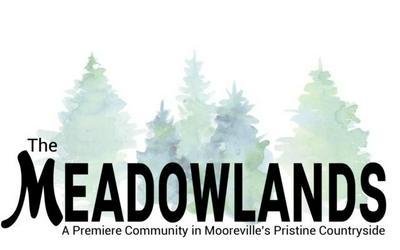 LOT 21 MEADOWLANDS DR, Mooreville, MS 38857 - Photo 1