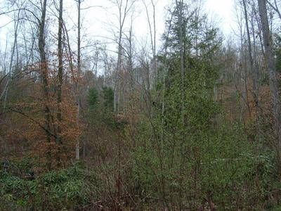 PRIVATE FOREST DRIVE, Dunmore, WV 24934 - Photo 1