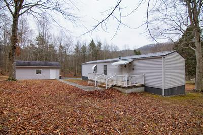 BACON FALLS ROAD, Talcott, WV 25951 - Photo 2
