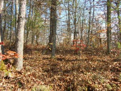 PRIVATE FOREST DRIVE, Dunmore, WV 24934 - Photo 2
