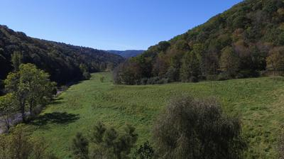 POWLEYS CREEK COUNTRYSIDE, Hinton, WV 25951 - Photo 1