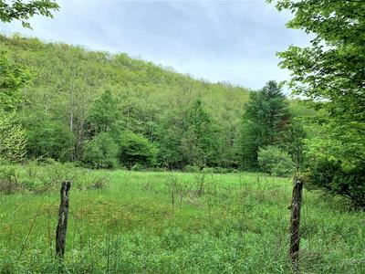 STONEY CREEK RD., Marlinton, WV 24954 - Photo 2