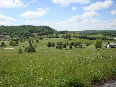 FAIRWAY VIEW DRIVE, Peterstown, WV 24963 - Photo 1