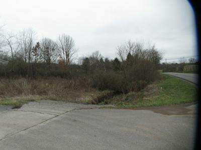 BRIER LANE, Frankford, WV 24938 - Photo 2