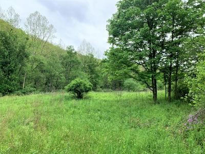 STONEY CREEK RD., Marlinton, WV 24954 - Photo 1