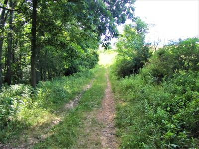 MILLER FARM RD, Peterstown, WV 24963 - Photo 2