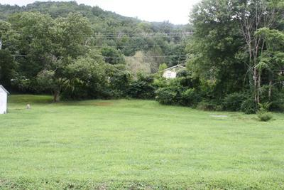 TAYLOR ST, Hinton, WV 25951 - Photo 2
